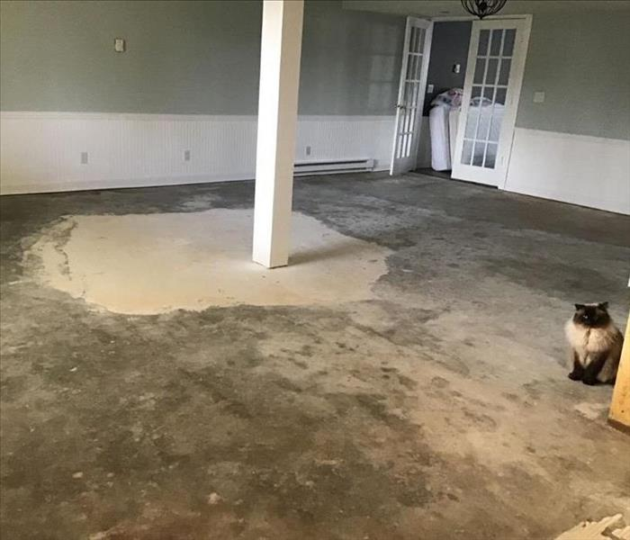 Basement with all laminate flooring removed exposing wet concrete