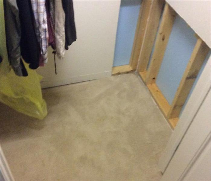 Mold Remediation in Oconomowoc, WI After