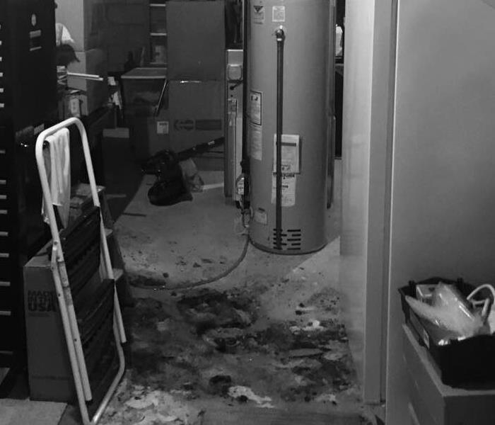 dark residential basement covered in stinky sewage