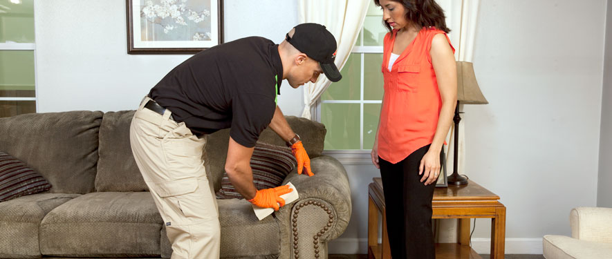 Waukesha, WI carpet upholstery cleaning